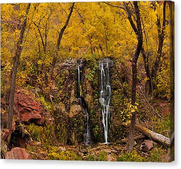 Weeping Rock Canvas Print by Leland D Howard