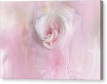 Weeping Rose Canvas Print