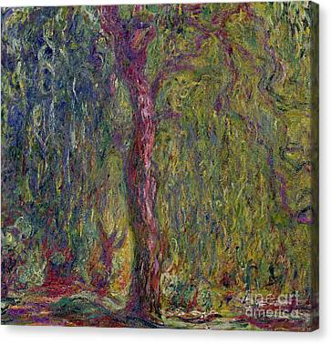 Weeping Willow Canvas Print - Weeping Willow by Claude Monet