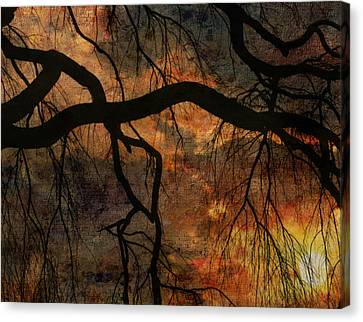 Weeping Willow Sunset Canvas Print by Bruce Rolff