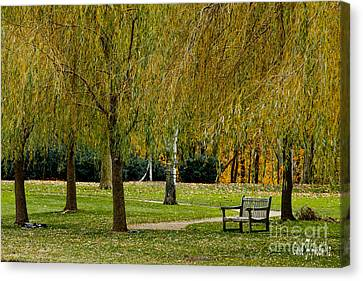 Weeping Willow Tree Landscape Canvas Print by Carol F Austin