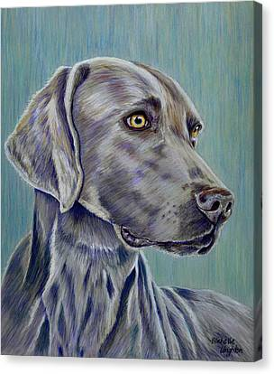 Weimaraner Grey Ghost Canvas Print by Michelle Wrighton