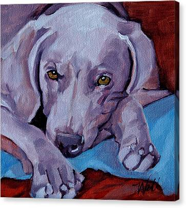 Weimaraner Canvas Print by Pattie Wall