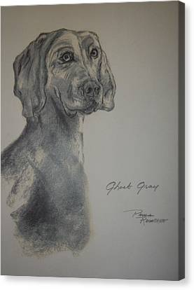 Weimaraner Canvas Print by Paula Rountree Bischoff
