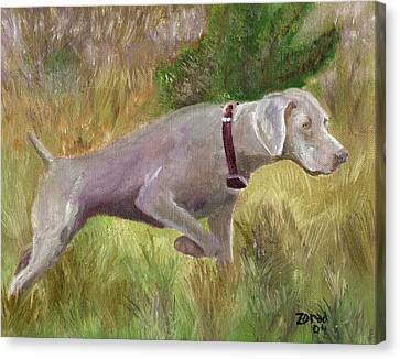 Weimaraner Point Canvas Print by Mary Jo Zorad