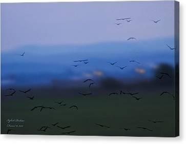 Welcome - Happy Landing Canvas Print