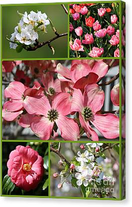 Welcome Spring Collage Canvas Print by Carol Groenen