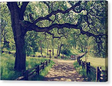 Entrances Canvas Print - Welcoming by Laurie Search