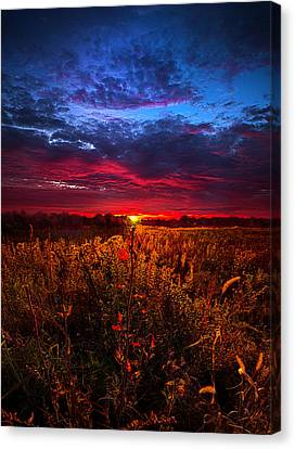 We'ld Do It All Again Canvas Print by Phil Koch