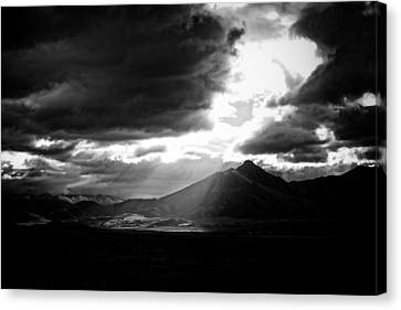 Weldon In The Light Canvas Print