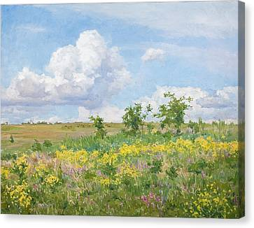 Well-dressed Land Canvas Print by Victoria Kharchenko