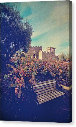 We'll Meet Among The Vines Canvas Print by Laurie Search