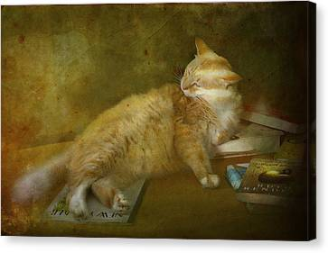 Canvas Print featuring the photograph Well Read by Kandy Hurley