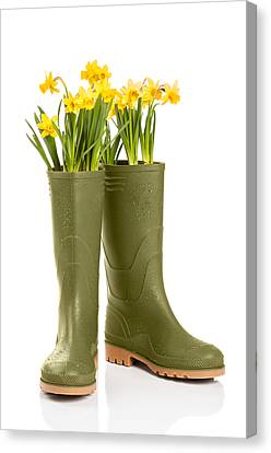 Spring Flowers Canvas Print - Wellington Boots by Amanda Elwell