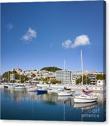 Wellington Oriental Bay Marina New Zealand Canvas Print by Colin and Linda McKie
