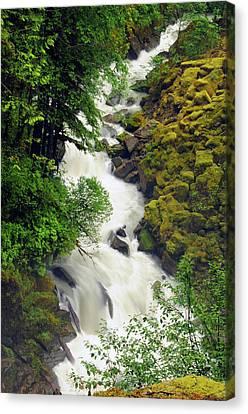 Wells Creek, Mount Baker-snoqualmie Canvas Print