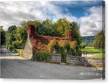 Welsh Cottage Canvas Print by Adrian Evans