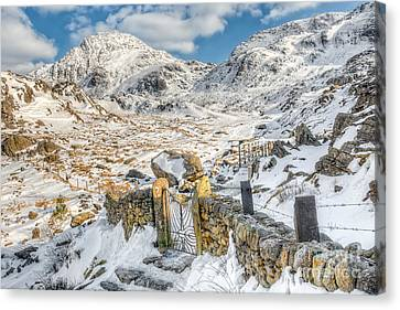 Welsh Gate  Canvas Print by Adrian Evans