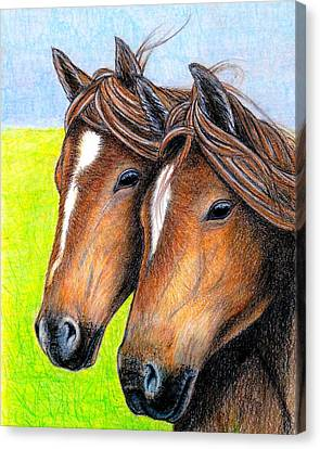 Welsh Mountain Ponies Canvas Print