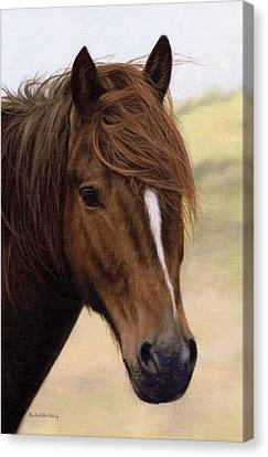 Welsh Pony Painting Canvas Print by Rachel Stribbling