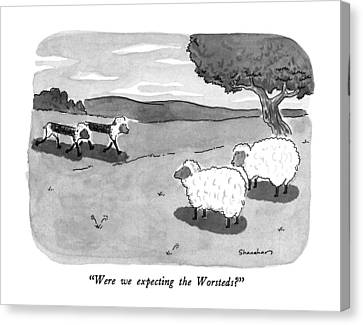 Were We Expecting The Worsteds? Canvas Print by Danny Shanahan
