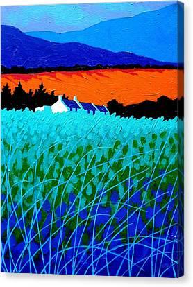 West Cork Landscape Canvas Print by John  Nolan