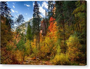 West Fork Wonders  Canvas Print by Saija  Lehtonen