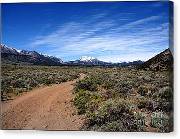 Canvas Print featuring the photograph West Of The Sierra Nevada  by Thomas Bomstad