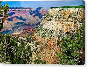 West Rim Drive Grand Canyon Canvas Print by Bob and Nadine Johnston
