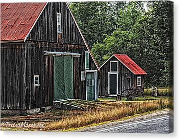 West Side Road Canvas Print by Tricia Marchlik