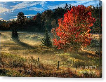 West Virginia Fall Sunrise I Canvas Print