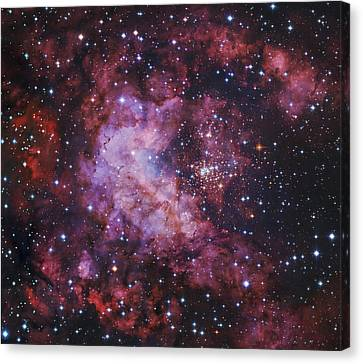 Westerlund 2 Gum 29 Star Cluster Canvas Print by Robert Gendler