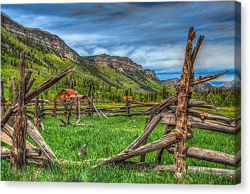 Western Solitude Canvas Print by Tom Weisbrook