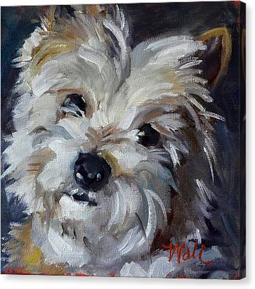 Westie Mix Canvas Print by Pattie Wall