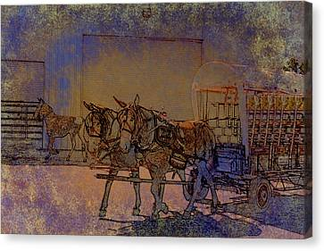 Westmoreland Mule Day Canvas Print by EricaMaxine  Price