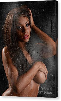 Wet 2 Canvas Print by Jt PhotoDesign