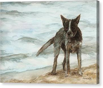 Wet Dog - Cattle Dog Canvas Print