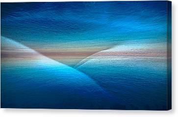 Wet Dream Canvas Print by Jb Atelier