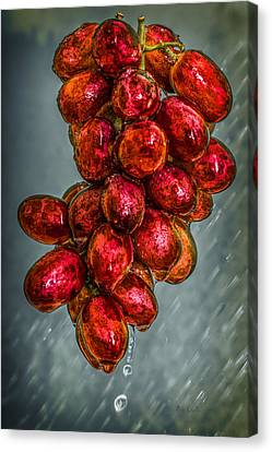 Wet Grapes Four Canvas Print by Bob Orsillo