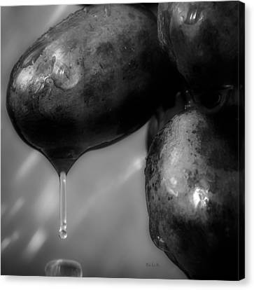 Wet Grapes Two Canvas Print by Bob Orsillo