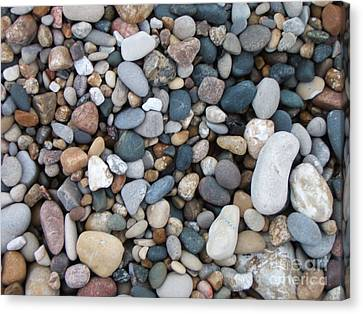 Wet Pebbles Canvas Print by Margaret McDermott