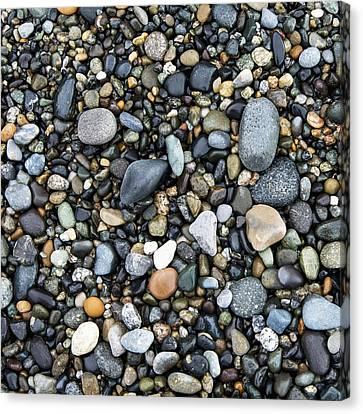 Oak Harbor Canvas Print - Wet Rocks On The Beach Oak Harbor by Keith Levit