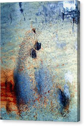 wet Canvas Print by Tom Druin