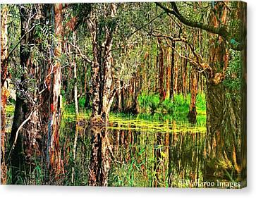 Wetland Reflections Canvas Print by Wallaroo Images