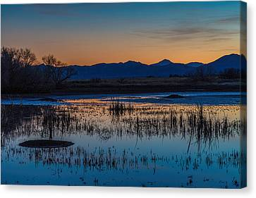 Canvas Print featuring the photograph Wetland Twilight by Beverly Parks