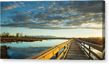 Wetland Wooden Path Canvas Print