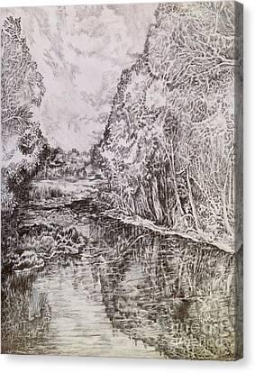Wetlands Canvas Print by Iya Carson