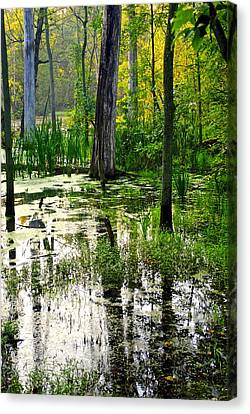 Wetlands Canvas Print by Frozen in Time Fine Art Photography