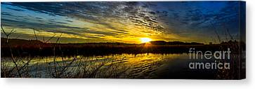 Wetlands Sunset Canvas Print