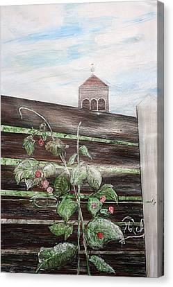 Kirche Canvas Print - Wetterhahn by Klaus Rach